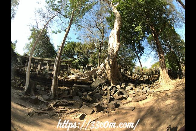 カンボジア旅行記_ベンメリア遺跡5