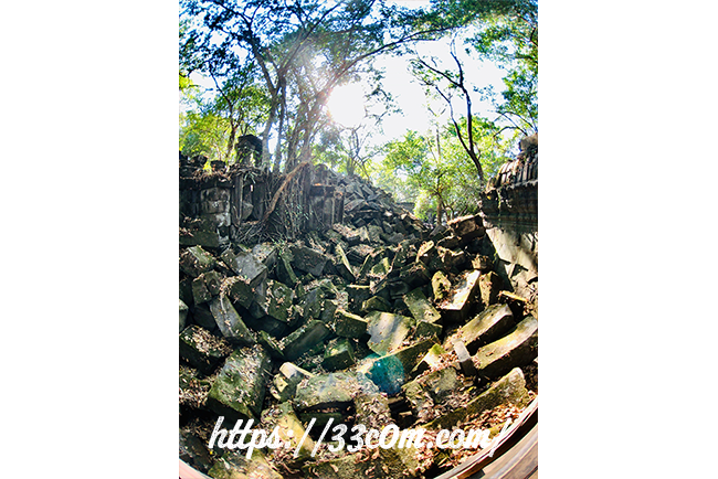 カンボジア旅行記_ベンメリア遺跡1